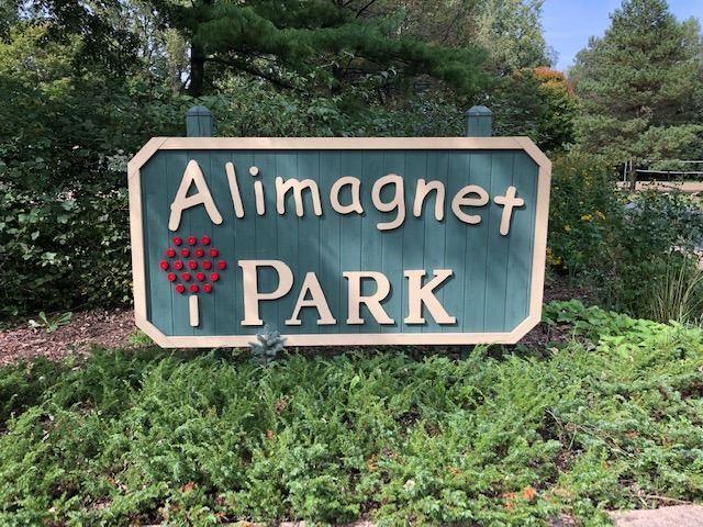 Alimagnet Park in Burnsville