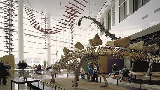 Minnesota Science Museum**
